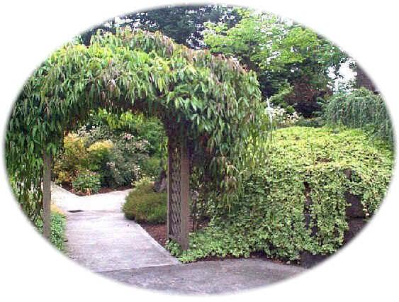 conservation garden entrance - Water Conservation Garden